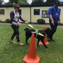 guide-dogs-visit-kingfishers-11